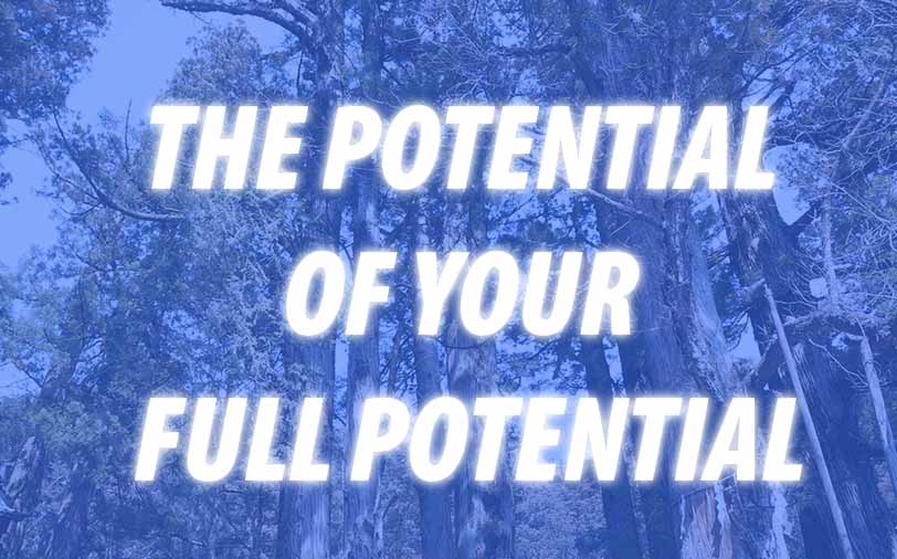 THE POTENTIAL OF YOUR FULL POTENTIAL